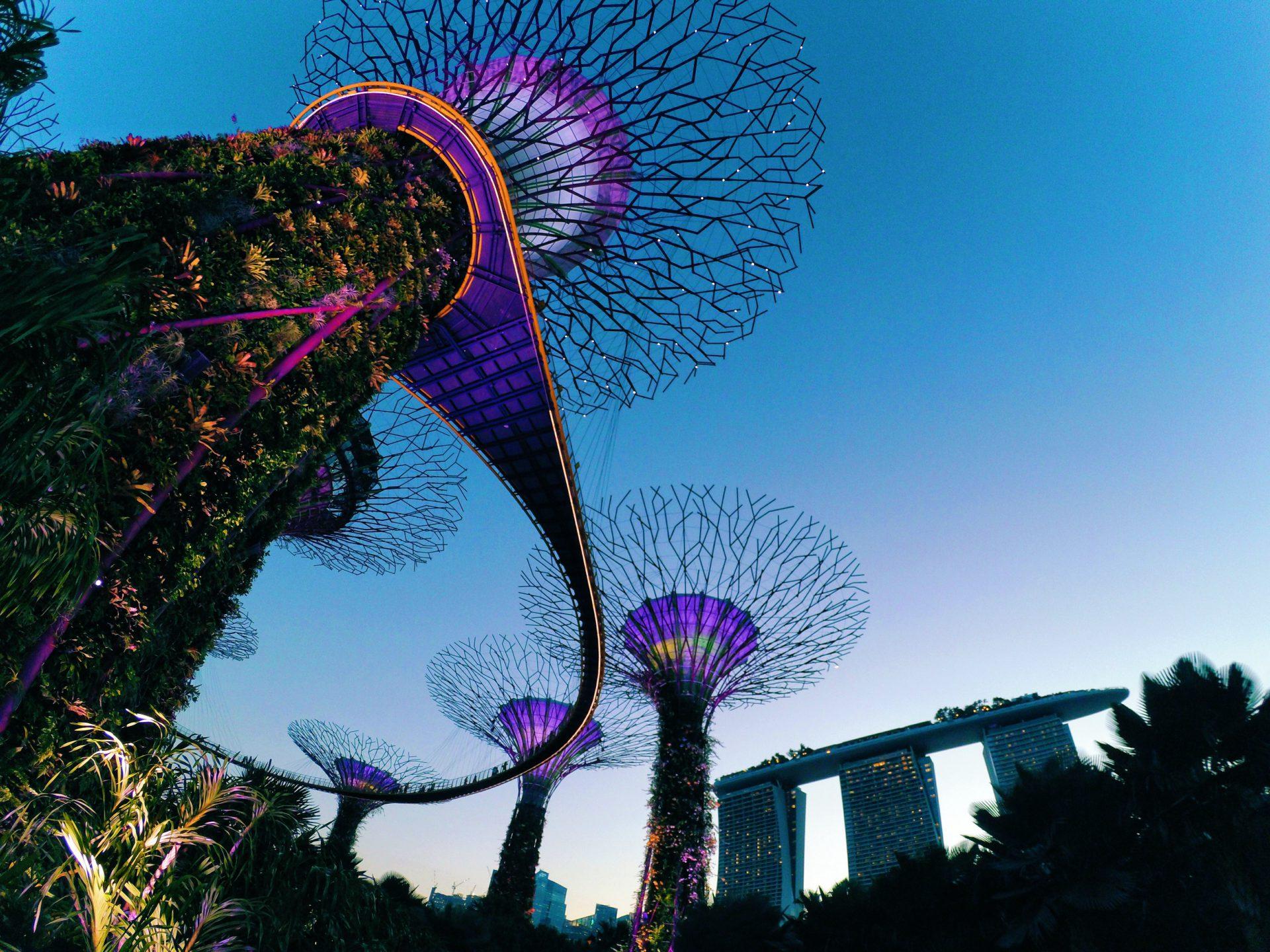 Leadership Spotlight: Vanessa Ho of Weber Shandwick Singapore